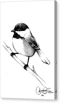 Chickadee Canvas Print by Corinne States