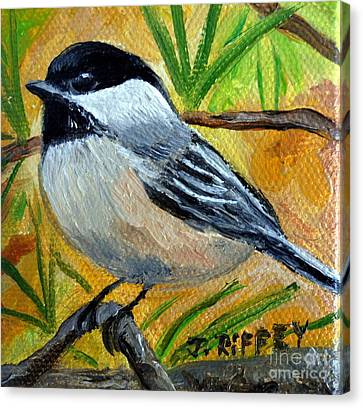 Chickadee In The Pines - Birds Canvas Print by Julie Brugh Riffey