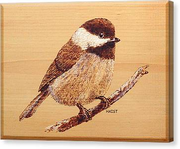 Canvas Print featuring the pyrography Chickadee by Ron Haist