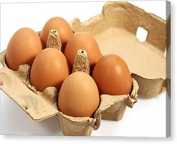 Chicken Eggs In Eggbox Canvas Print