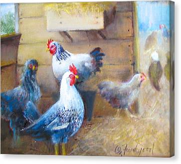 Chickens All Cooped Up Canvas Print by Oz Freedgood