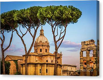 The Pines Of Rome Canvas Print by Inge Johnsson
