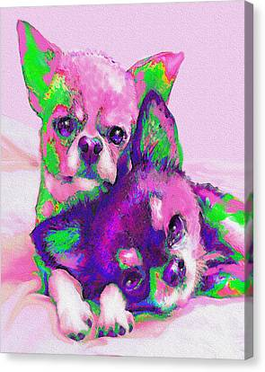 Chihuahua Love Canvas Print by Jane Schnetlage