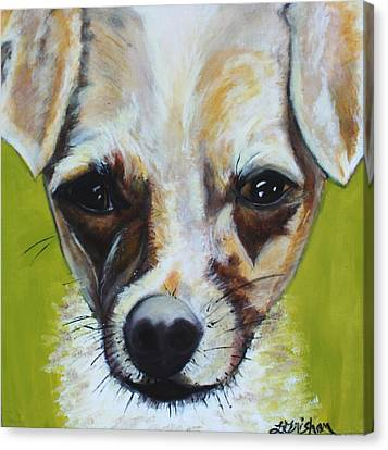 Canvas Print featuring the painting Chihuahua Mix- Roxie by Laura  Grisham