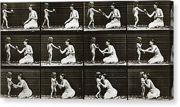 Child Bringing Bouquet To A Woman, Plate 465 From Animal Locomotion, 1887  Canvas Print by Eadweard Muybridge