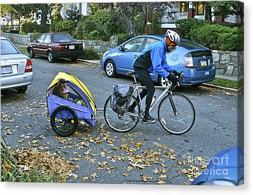 Child Cart Pulled By Fathers Bicycle Canvas Print by Blair Seitz