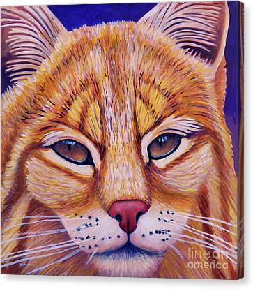 Bobcats Canvas Print - Child Of The Day by Brian Commerford