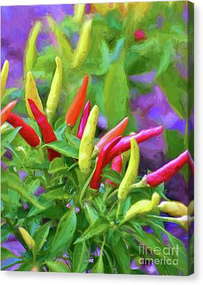 Canvas Print featuring the photograph Chili Pepper Art by Kerri Farley