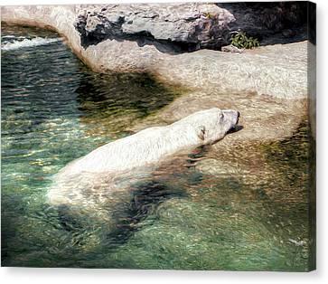 Canvas Print featuring the photograph Chillin' Polar Bear by Pennie  McCracken