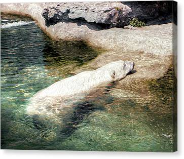 Canvas Print featuring the photograph Chillin' Polar Bear by Pennie  McCracken