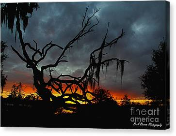 Chilling Sunset Canvas Print