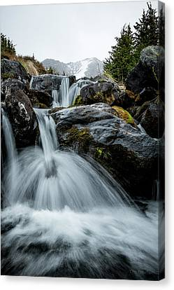 Canvas Print featuring the photograph Chilly Spring Shower by Tim Newton