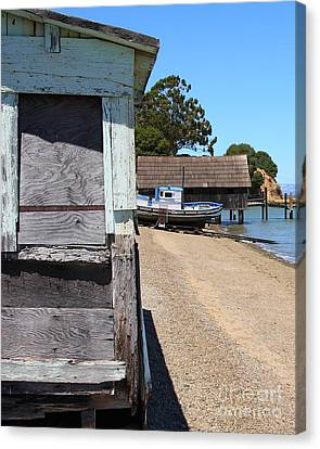 China Camp In Marin Ca - Vertical Canvas Print by Wingsdomain Art and Photography