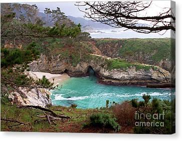 China Cove At Point Lobos Canvas Print