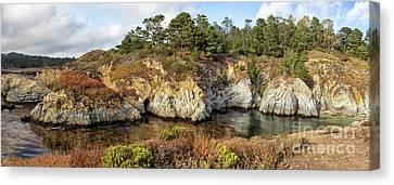 China Cove Canvas Print - China Cove, Point Lobos by Yair Karelic