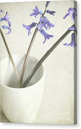 Canvas Print featuring the photograph China Cup by Lyn Randle