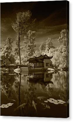 Canvas Print featuring the photograph Chinese Botanical Garden In California With Koi Fish In Sepia Tone by Randall Nyhof