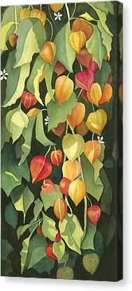 Chinese Lanterns Canvas Print by Anne Havard