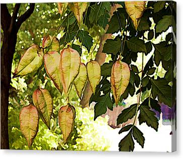 Chinese Lanterns Canvas Print by Paul Cutright