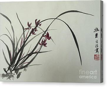 Chinese Orchid Canvas Print by Birgit Moldenhauer