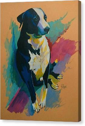 Chinito Canvas Print