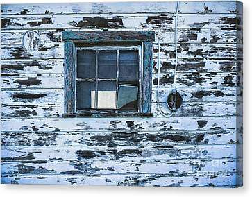 Chipped Paint Canvas Print by Colleen Kammerer