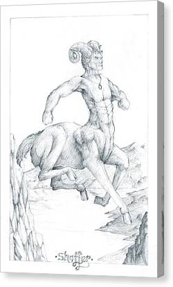 Chiron The Centaur Canvas Print by Curtiss Shaffer