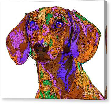 Chloe. Pet Series Canvas Print by Rafael Salazar