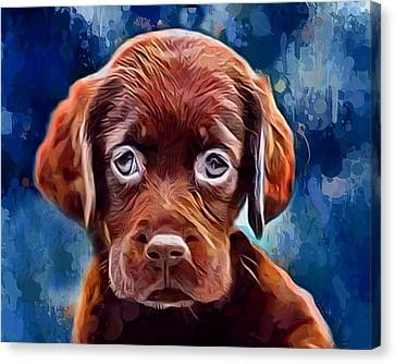 Chocolate Lab Pup Canvas Print by Scott Wallace