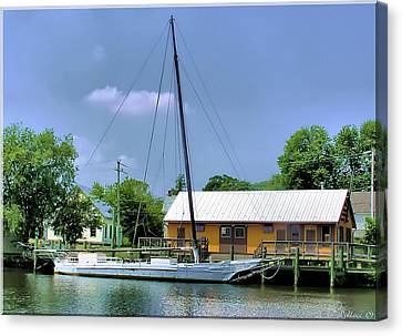 Choptank River Canvas Print by Brian Wallace