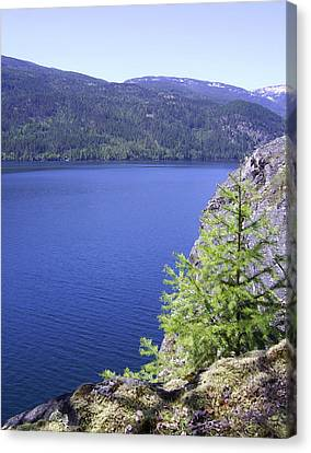 Christina Lake Texas Point Lookout Grand Forks Bc  Canvas Print by Barbara St Jean
