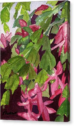 Canvas Print featuring the painting Christmas Cactus by Lynne Reichhart