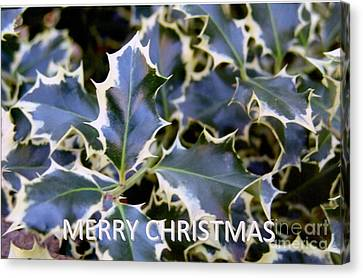 Christmas Card 2 - 2011 Canvas Print by Rod Ismay