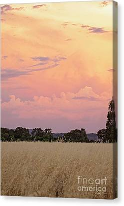 Canvas Print featuring the photograph Christmas Eve In Australia by Linda Lees