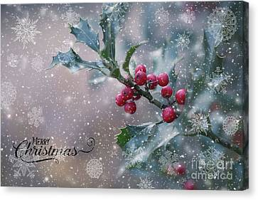 Christmas Holly Canvas Print by Eva Lechner