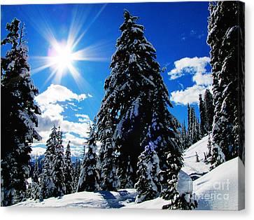 Christmas On Mount Rainier Canvas Print