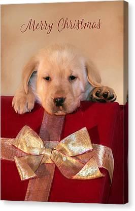 Christmas Puppy Canvas Print by Lori Deiter