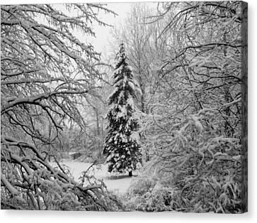 Christmas Snow Canvas Print by Michael L Kimble