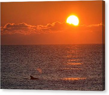 Canvas Print featuring the photograph Christmas Sunrise On The Atlantic Ocean by Sumoflam Photography