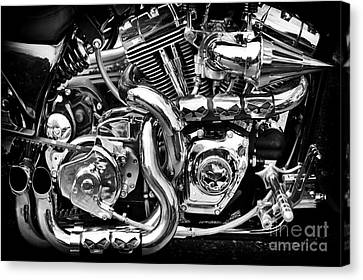 Chrome And Skulls Canvas Print