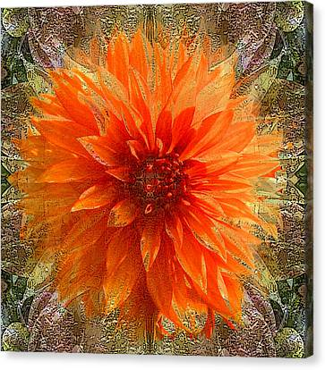 Chrysanthemum Canvas Print by Tom Romeo