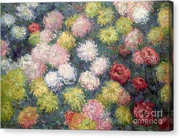 Chrysanthemums Canvas Print by Claude Monet