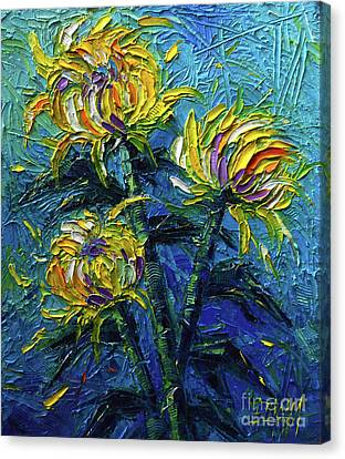 Chrysanthemums Etude Canvas Print