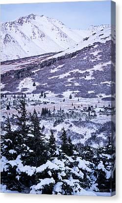 Chugach In Alpenglow Canvas Print