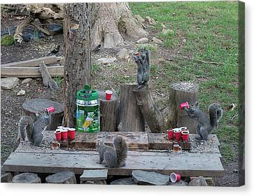 Canvas Print - Chugging Squirrels At Beer Pong by Dan Friend