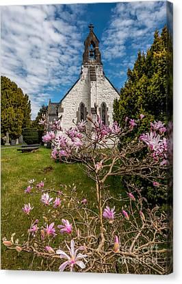Church Blossom Canvas Print by Adrian Evans