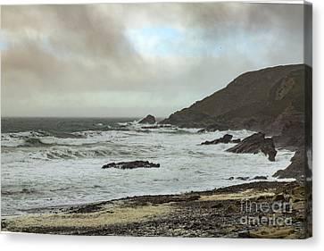 Canvas Print featuring the photograph Church Cove Gunwallow by Brian Roscorla