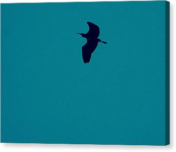 Canvas Print featuring the digital art Cigogne En Silhouette by Marc Philippe Joly