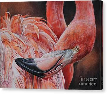 Cinder  Canvas Print