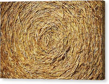 Circle Of Straw Canvas Print by Todd Klassy